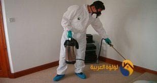شركة رش مبيدات حشرية بالرس