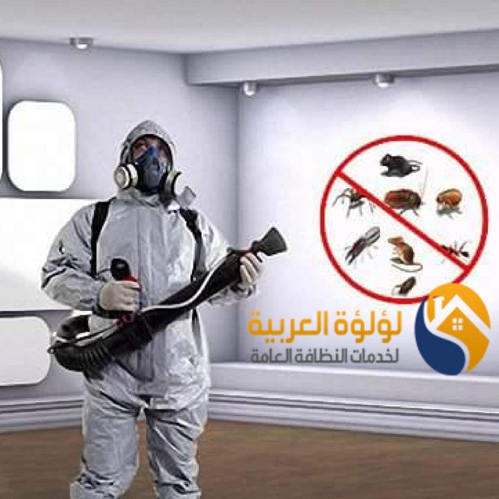 شركة مكافحة حشرات بالبكيرية