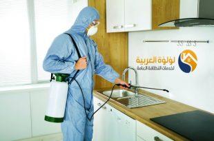 افضل شركة مكافحة حشرات بالمذنب 0537979574 | لؤلؤة العربية