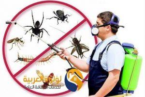 شركة رش مبيدات حشرية ببريدة