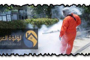 أفضل شركة مكافحة حشرات الزلفي 0537979574