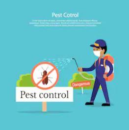أسعار شركات مكافحة حشرات بالقصيم