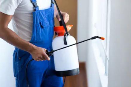 شركة مكافحة حشرات وقوارض بالبكيرية 0537979574
